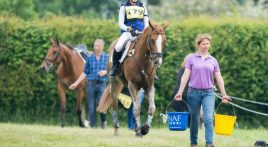 12 tips to keep your horse hydrated