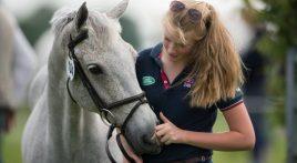 Can horses feel what we feel?