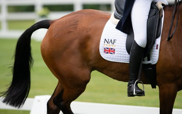 Fulfil your eventing potential