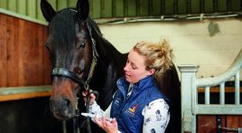 Expert advice on worming horses