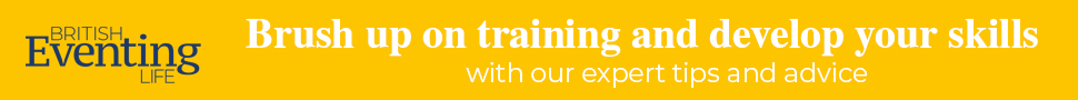 BEL Training category 970×90