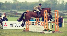 How to get a clear show jumping round
