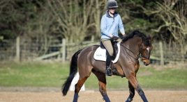 What surface should you train on for eventing?