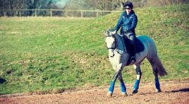 What do you do with your event horse in winter?