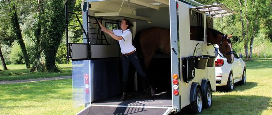 Have horse, will travel